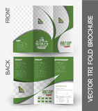Golf Tournament Tri-Fold Brochure Stock Images