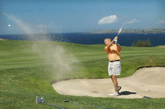 Golf - The Trap. Golfer explodes from trap Stock Photography