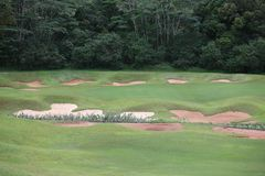 Golf Traps, Oahu golf course Royalty Free Stock Photo