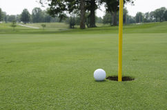 Golf turf royalty free stock image