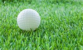 Golf- und Grünfeld Lizenzfreie Stockfotografie