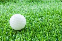 Golf- und Grünfeld Lizenzfreies Stockbild