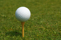 Golf vacation. Golf ball with tee on grass Royalty Free Stock Photos