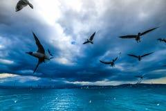 Golf van Izmir Turkije stock afbeelding