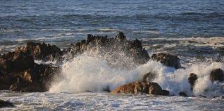 Golf van oceaan Stock Fotografie