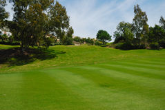 Golf vert Photographie stock