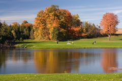 Golf view 06.  Royalty Free Stock Photo