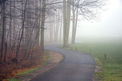 Golf-Wagen-Pfad im Nebel stockfoto