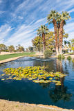 Golf water hazard with a fountain and trees stock image