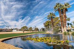 Golf water hazard with a fountain and trees. Trees around a golf water hazard with a fountain royalty free stock image