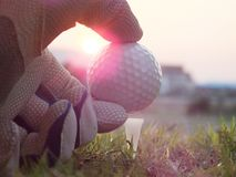 Golf on the white tee On the green lawn there is sunshine. royalty free stock images