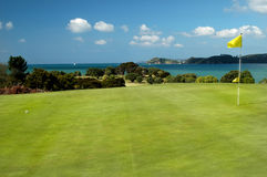 Golf - Yellow Pin. Golfing green near coast Stock Images