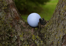 golf2 Royaltyfri Foto