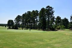 Golfare på kurs Royaltyfri Foto