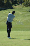 golfareswing royaltyfria foton