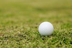 Golfbälle im Gras Lizenzfreie Stockbilder
