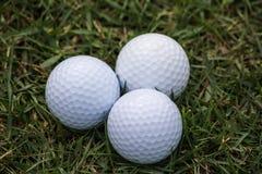 Golfbälle sind auf dem Gras innerhalb eines Golfplatzes lizenzfreies stockbild