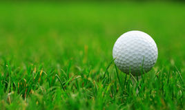 Golfbal Stock Foto