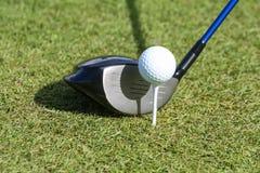Golfbal en club in gras Stock Afbeelding