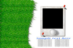 Golfbal en groen gras met oud fotoframe Royalty-vrije Stock Afbeelding