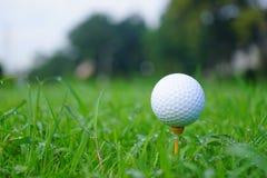 Golfbal en T-stuk met gouden cursusachtergrond klaar weg tee stock afbeeldingen