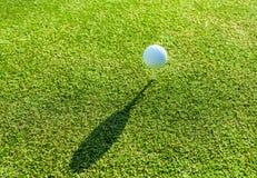 Golfbal en T-stuk op groen gras tijdens opleiding Royalty-vrije Stock Foto's