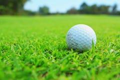 Golfbal in fairway Stock Foto