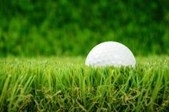 Golfbal in gras Stock Fotografie