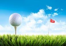 Golfbal met T-stuk in het gras Stock Fotografie