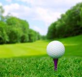 Golfbal op cursus Royalty-vrije Stock Afbeelding