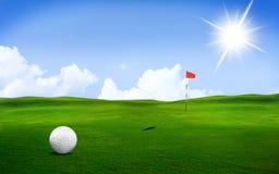 Golfbal op de cursus Stock Fotografie