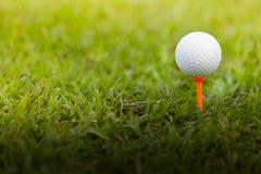 Golfbal op een T-stuk stock afbeeldingen