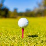 Golfbal op een T-stuk bij een Golfcursus stock fotografie