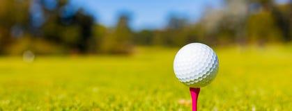 Golfbal op een T-stuk bij een Golfcursus stock foto
