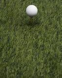 Golfbal op Gras Royalty-vrije Stock Foto