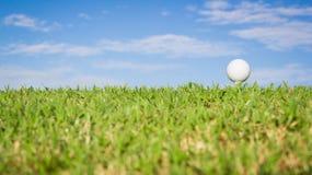 Golfbal op gras met hemelachtergrond royalty-vrije stock foto's