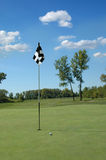 Golfbal op green Royalty-vrije Stock Afbeelding