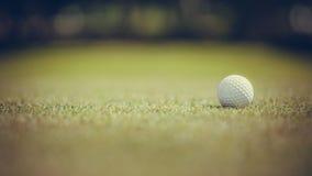Golfbal op Green Stock Fotografie
