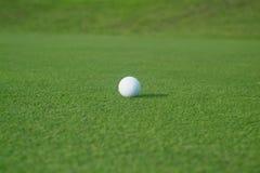 Golfbal op green stock foto