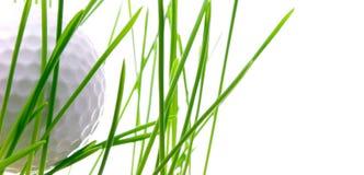 Golfbal op groen geïsoleerdt gras - Stock Foto's
