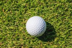 Golfbal op groen gras Stock Afbeelding