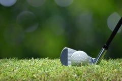 Golfbal op groen gras klaar om op golfcursus worden geslagen royalty-vrije stock foto
