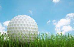 Golfbal op groen gras zijaanzicht Royalty-vrije Stock Afbeeldingen