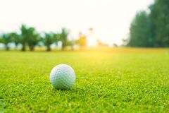 Golfbal op groen in mooie golfcursus met zonsondergang Golfbal dichte omhooggaand in golfcoures in Thailand stock afbeeldingen