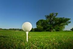 Golfbal op het T-stuk Royalty-vrije Stock Foto