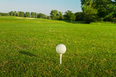 Golfbal op het T-stuk. Stock Afbeeldingen