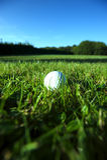 Golfbal op natte weelderige fairway Stock Fotografie