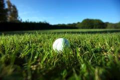 Golfbal op natte weelderige fairway Stock Afbeeldingen