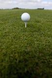 Golfbal op T-stuk Royalty-vrije Stock Afbeeldingen