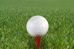 Golfbal op T-stuk stock fotografie